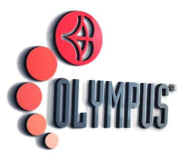 Ing. Domenico Brigante - Olympus-frp